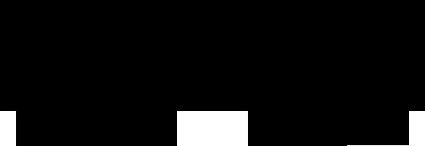 Type S
